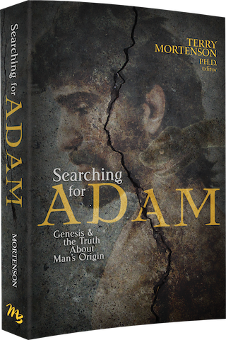 searching-for-adam-cover-3d-copy